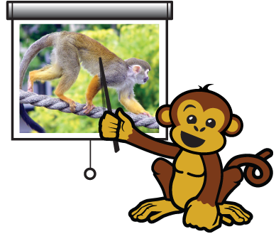cartoon monkey using a pointer to point at a pull-down movie screen on which there is an image of a squirrel monkey walking on all fours on a large rope.
